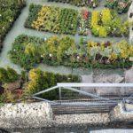Czy sadzenie roślin przy ogrodzeniu to dobry pomysł? Zielony parkan – czyli jakie rośliny posadzić przy ogrodzeniu